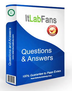 ItLabFans Product